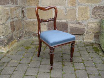 5er Satz Esszimmer Stühle William IV aus Palisander